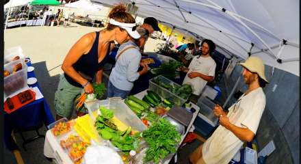 At Wednesday Farmers Market I Signed >> Pemberton Farmers Institute Potato Nation