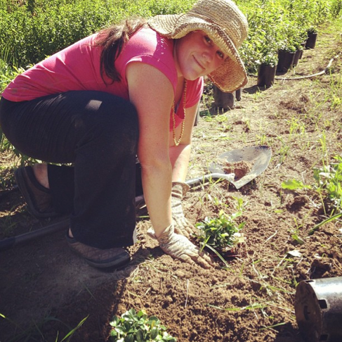 Weeding and planting in the high summer heat. This is how I spend my summers to avoid the bugs.